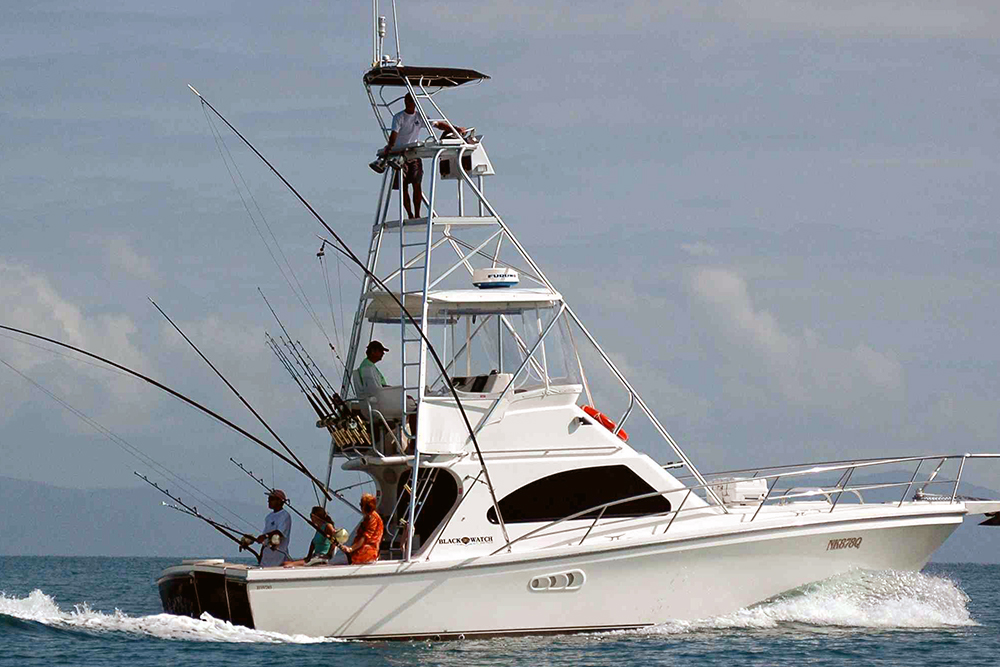Port Douglas Budget Game Fishing Boat