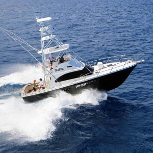 marlin fishing charter boat