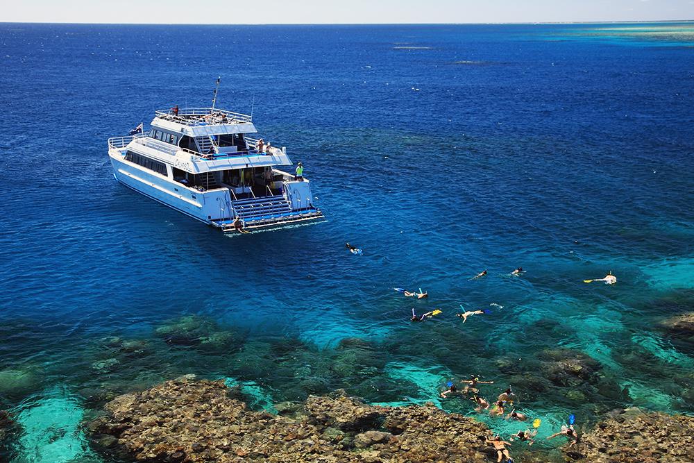 Agincourt Reef Snorkeling