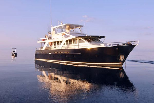 Luxury Fishing Mothership