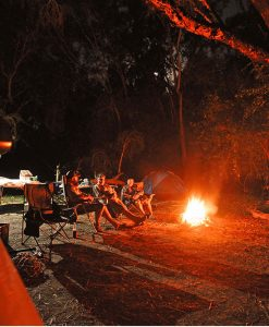 barramundi fishing safari camp