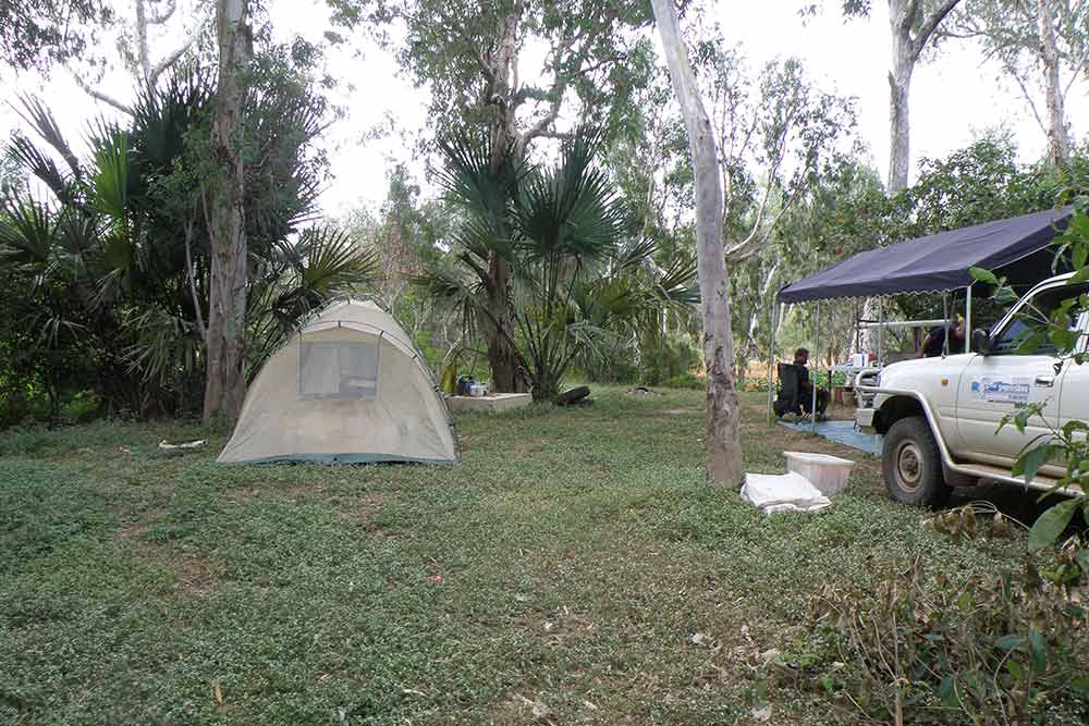 barramundi fishing safari tents