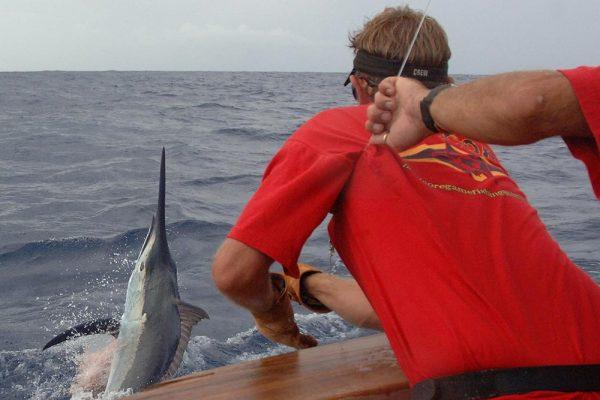 marlin fishing charter tagging