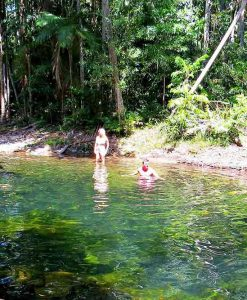 daintree rainforest swim
