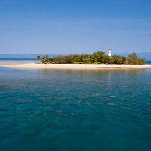 half day reef tour island
