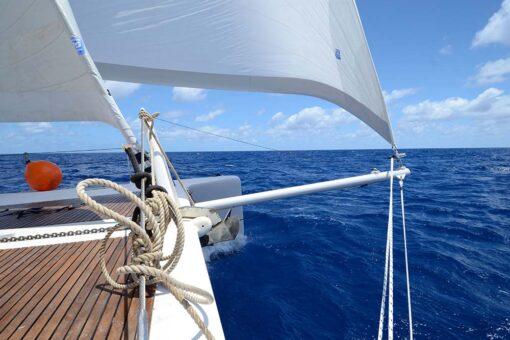 liveaboard sailing catamaran topside