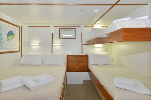 luxury diving liveaboard cabin