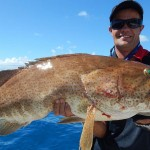 shared reef fishing boat cod