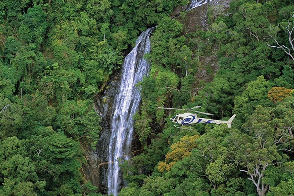 rainforest helicopter tour