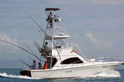 Port Douglas Budget Game Fishing Boat