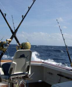 Game Fishing Port Douglas