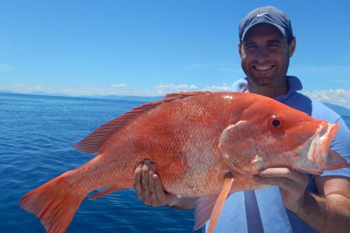 shared reef fishing boat nannygai